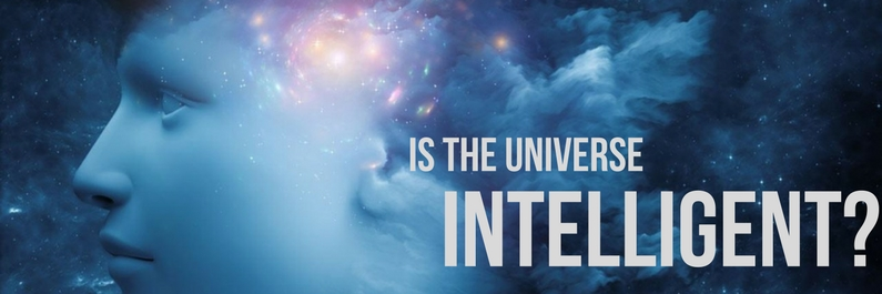 Is the Universe intelligent or not?